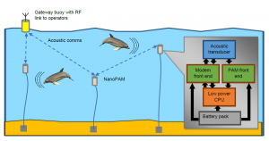 Illustration of the acoustically networked passive acoustic monitoring system